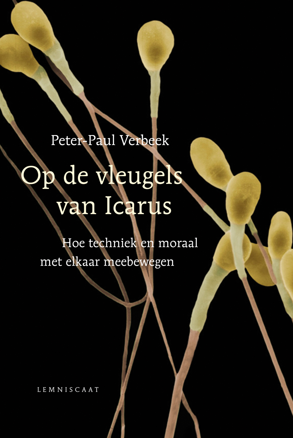 On the wings of Icarus: how technology and morality develop in concert. By Peter-Paul Verbeek.